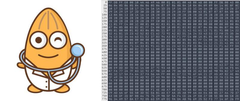 一张图片在计算机中的原始数据